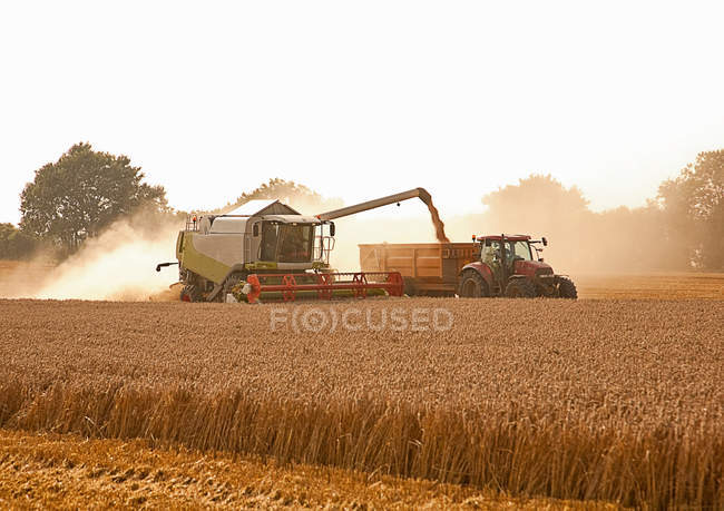 Tractor and combine harvester in field — Stock Photo