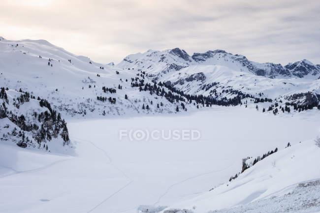 Сніг накривав полонину, Енгельберг, Гора Titlis, Швейцарія — стокове фото