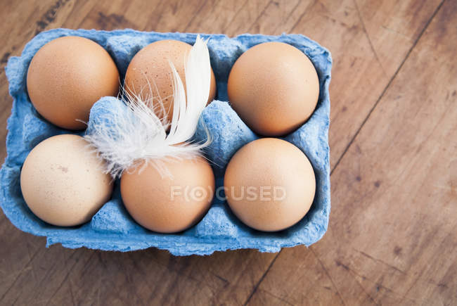 Six brown eggs in blue egg box with feather — Stock Photo