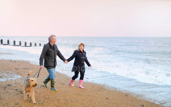 Senior couple walking dog on beach — Stock Photo