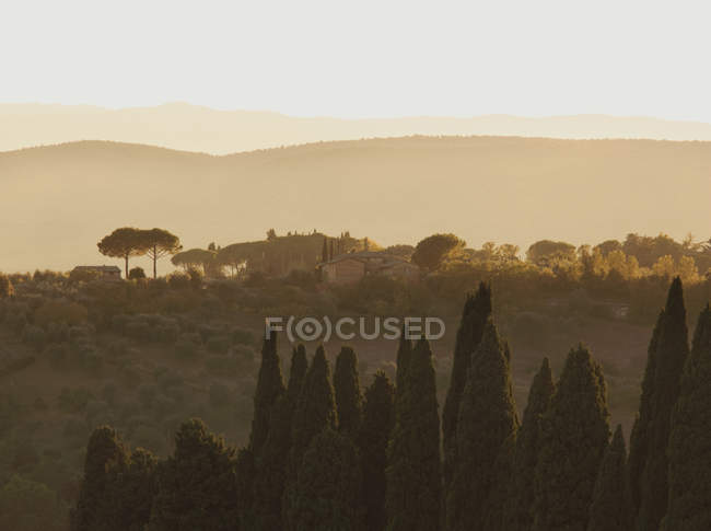View of hilly landscape of Tuscany at sunset on the outskirts of Siena, Italy — Stock Photo