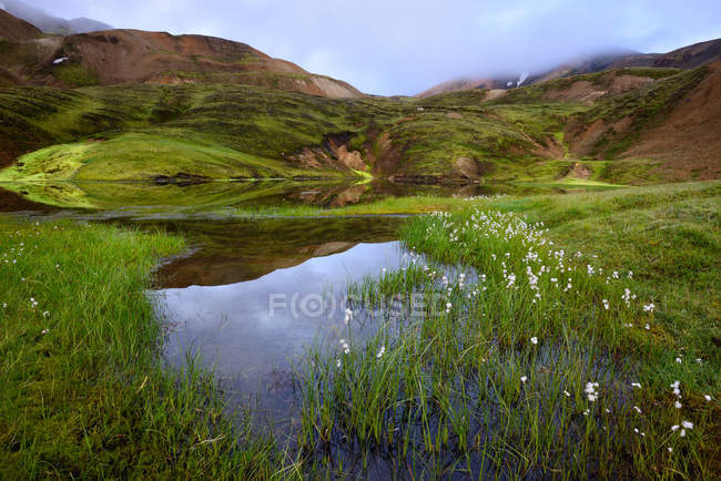 Swampy valley and hills covered in lush greenery — Stock Photo