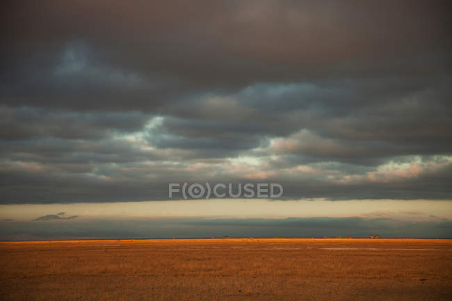 Stormy skies over savannah of Amboseli National Park — Stock Photo