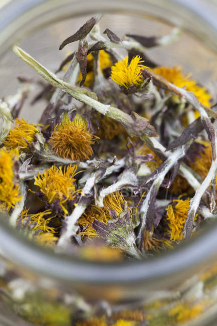 Close up of a jar containing dried coltsfoot stems and flowers — Stock Photo