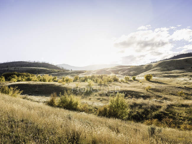 Trans Canada Highway, vicino Kamloops, Boston Flats, British Columbia, Canada — Foto stock
