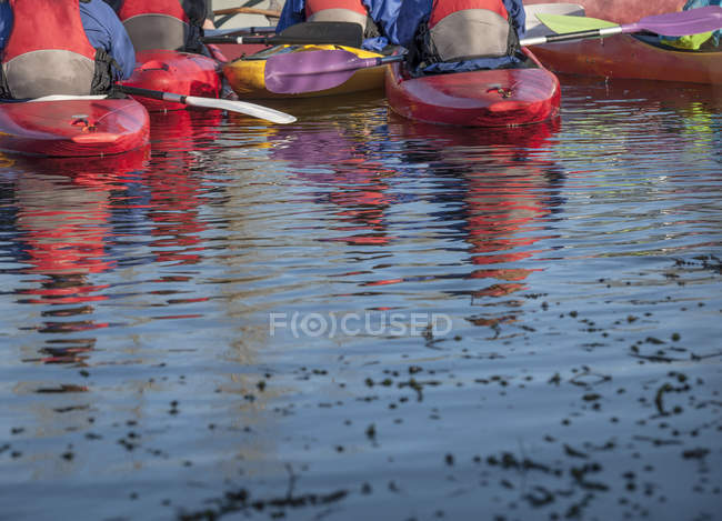 Group of people in kayaks, rear view — Stock Photo