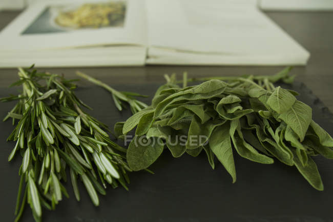 Green Rosemary and sage with cook book on table — Stock Photo