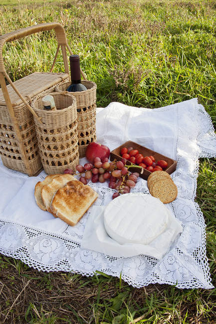 Fruits with cheese and alcohol drinks on grass at picnic — Stock Photo
