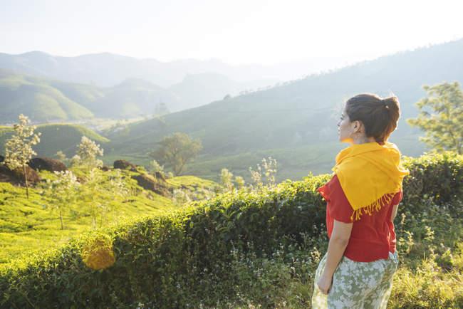 Молода жінка погляд на чайних плантаціях поблизу Munnar, Керала, Індія — стокове фото