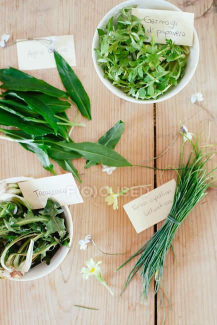 Herbes sauvages fraîchement cueillies et marqués sur la table en bois — Photo de stock