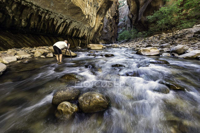 Uomo in piedi in fotografia presa di fiume, rear view, The Narrows, Zion National Park, Zion, Utah, Stati Uniti — Foto stock