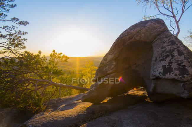 Boulder e caduta albero su roccia durante il tramonto sulla foresta — Foto stock