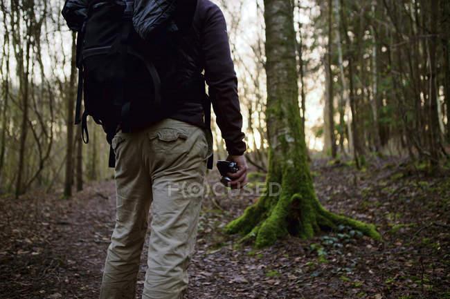 Vista traseira cortada tiro de andarilho masculino andando na floresta — Fotografia de Stock