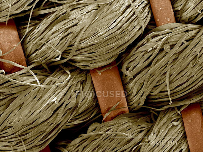 Piece of antique crinolin, horsehair and linen SEM — Stock Photo