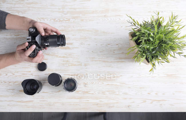 Overhead view of male photographer photographing plant on table — Stock Photo