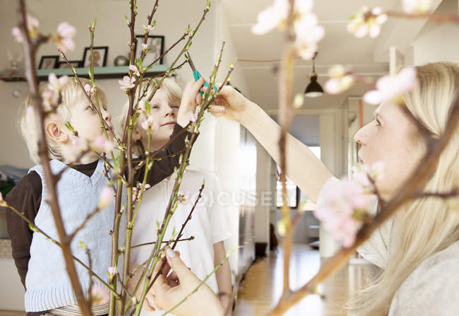 Mid adult mother and two sons trimming blossom twigs in sitting room — Stock Photo
