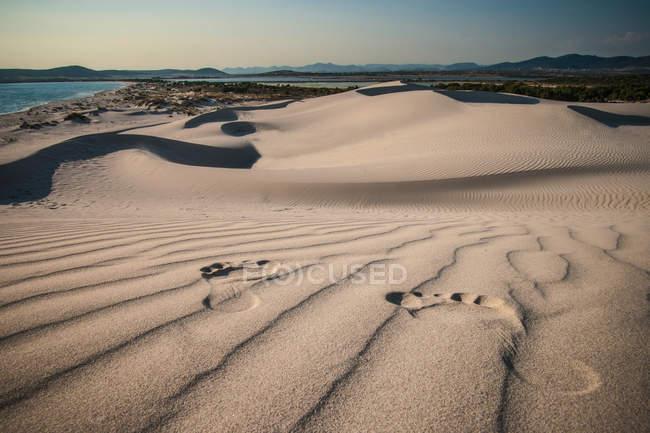 Следы на песке пляжа в ярком солнечном свете — стоковое фото