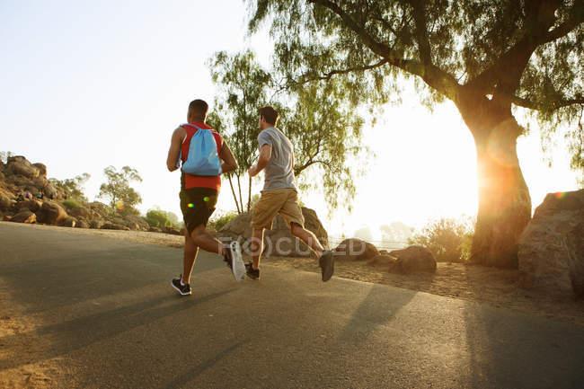 Двое друзей бегут, на улице, вид сзади — стоковое фото