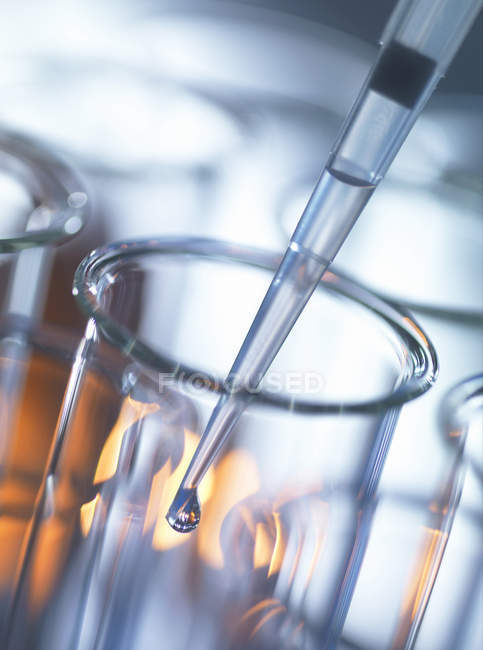 Analytical chemistry, sample being pipetted into a test tube for testing in laboratory — Stock Photo