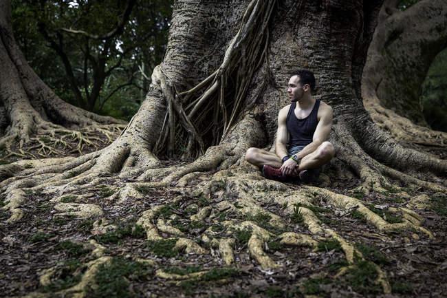 Молодой человек, сидящий в корнях деревьев в парке, Сан-Паулу, Бразилия — стоковое фото
