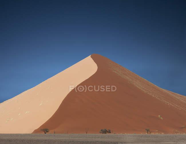 Alberi lontani e dune di sabbia giganti, Parco Nazionale di Sossusvlei, Namibia — Foto stock