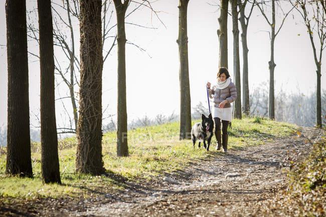 Femme adulte moyenne promenant son chien sur un chemin de terre — Photo de stock
