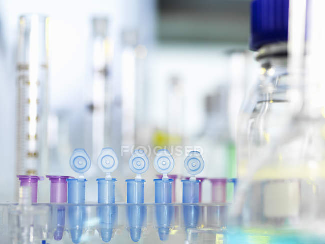Row of eppendorf vial awaiting sample for testing in laboratory — Stock Photo