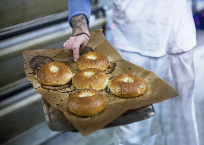 Baker with freshly-made bagels — Stock Photo