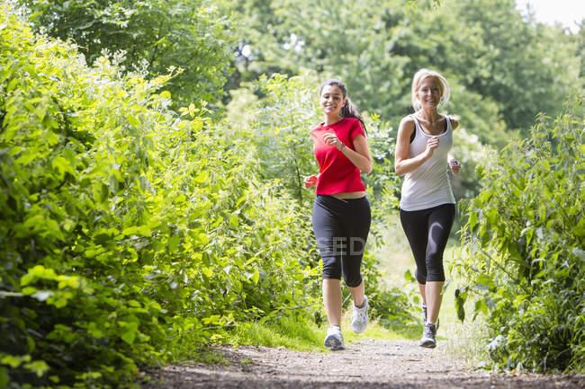 Две женщины бегают по лесу — стоковое фото
