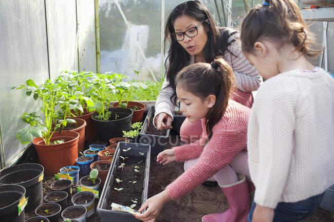 Mother and daughter planting seedlings in greenhouse — Stock Photo