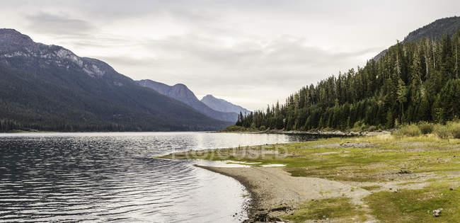 Forêt, paysage lacustre et montagneux, parc provincial Strathcona-Westmin, île de Vancouver, Colombie-Britannique, Canada — Photo de stock