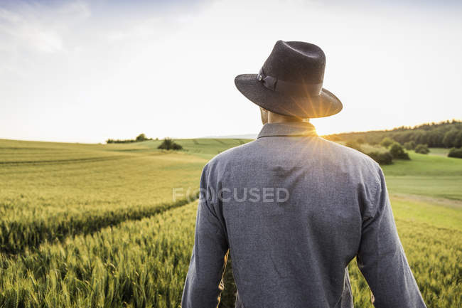 Mid adult man, standing in field, rear view, Neulingen, Baden-W?rttemberg, Germany — Stock Photo