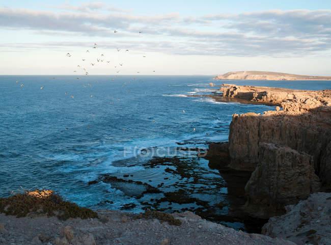 Cliffs of Eyre Peninsula — Stock Photo