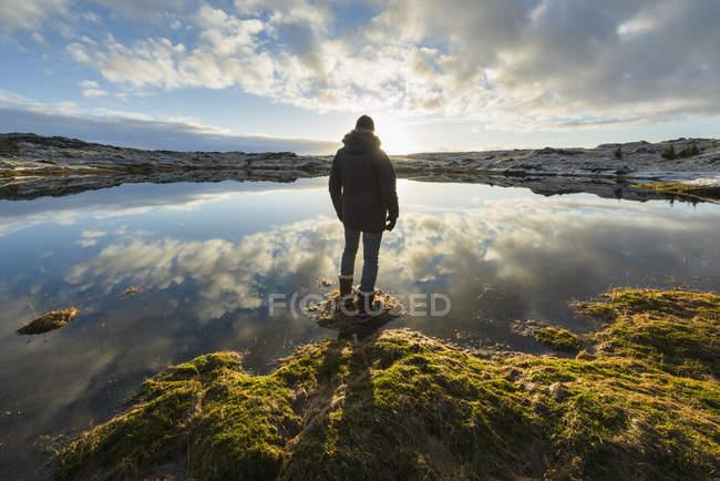 Uomo in piedi al bordo dell'acqua, guardando, vista posteriore, Tjarnarholl, Islanda — Foto stock