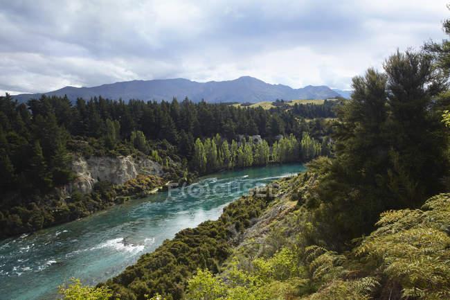 Vista del río, bosque y montañas - foto de stock