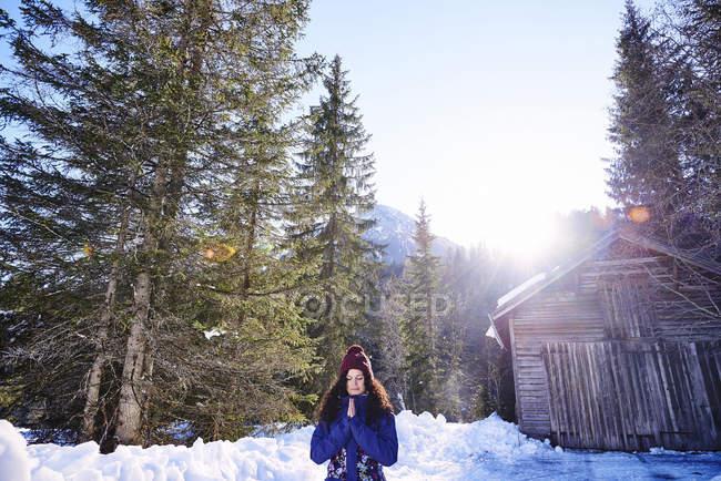 Donna che pratica yoga, meditando nella foresta innevata illuminata dal sole, Austria — Foto stock