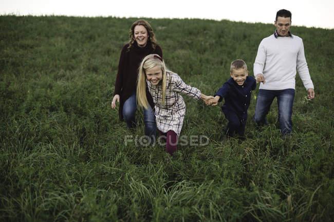 Família de mãos dadas caminhando no campo — Fotografia de Stock