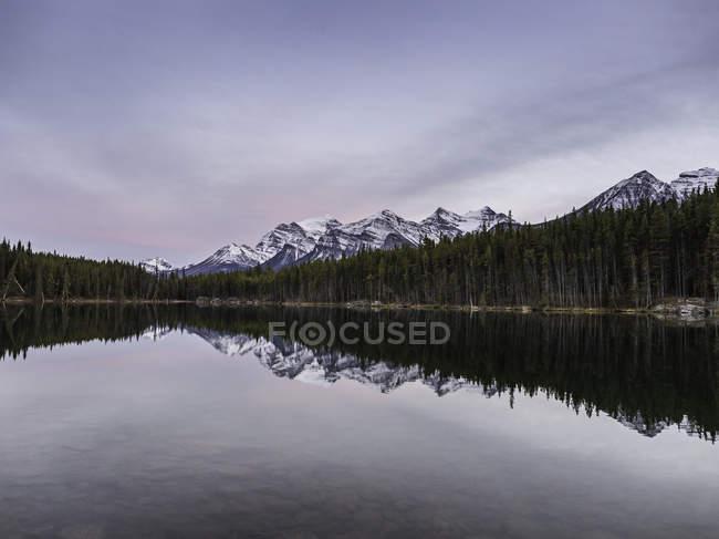 Intervallo di montagna innevata e alberi di pino che riflette in acqua di lago — Foto stock