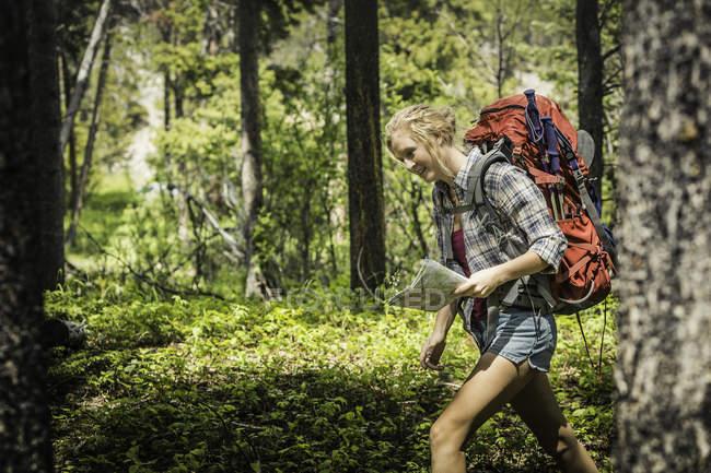 Teenage female hiker hiking through forest, Red Lodge, Montana, USA — Stock Photo
