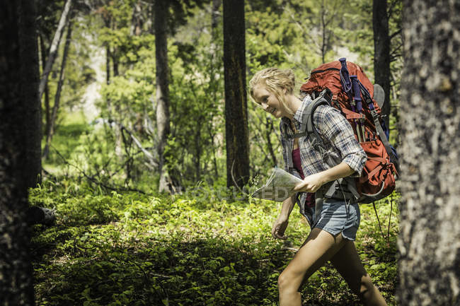 Teenage female hiker hiking through forest, Red Lodge, Montana, USA — Stock Photo