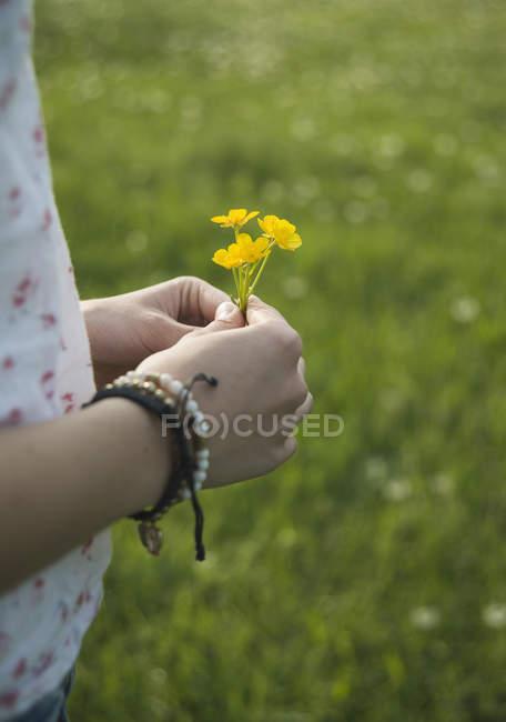 Jovem segurando flores amarelas, close-up — Fotografia de Stock