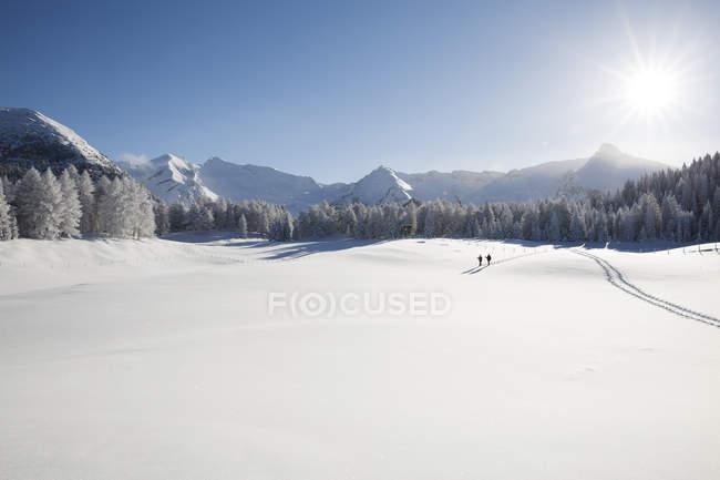 Nevados de la cordillera, árboles y distantes excursionistas en Valle - foto de stock