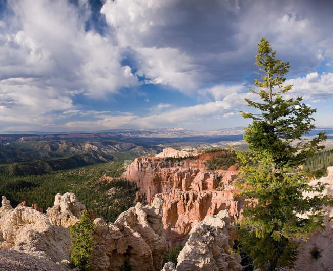 Scenic view of Bryce Canyon, Utah, USA — Stock Photo