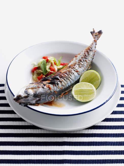 Teller mit gegrilltem Fisch mit Salat — Stockfoto