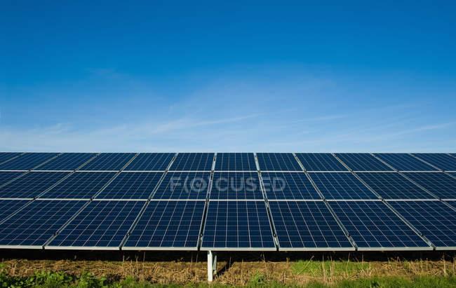 Панели солнечных батарей на траве под голубым небом — стоковое фото
