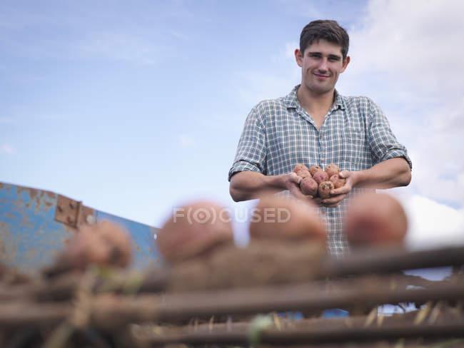 Portrait of farmer holding crops of organic potatoes — Stock Photo