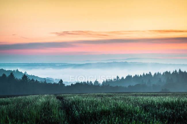 Sunset over field at Nussbaum — Stock Photo