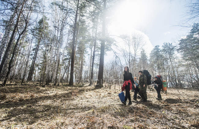 Молоді чоловіки і жінки дорослих з хлопчиком походи в ліс — стокове фото