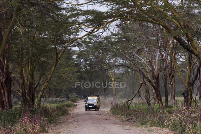 Safari транспортного засобу, озеро Накуру Національний парк, Кенія — стокове фото