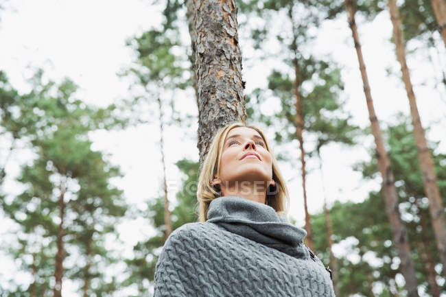 Mid adult woman in forest, low angle — Stock Photo